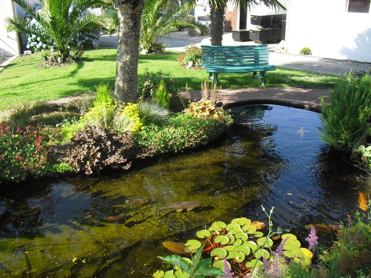 Bassin A Poisson Rouge installer un bassin de poisson dans le jardin – blog d'une